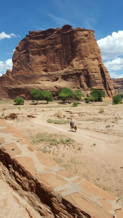 Un navajo sur son cheval qui veil sur le canyon