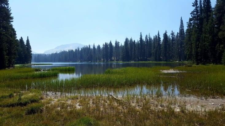 Dog lake