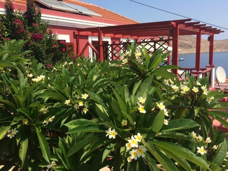 Des belles maisons fleuries pour y passer de belles vacances