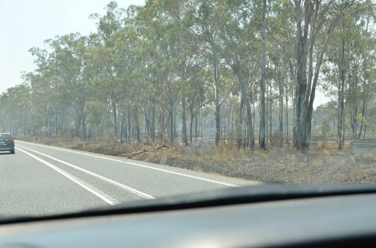 Routes enfumées et bordures brûlées ...