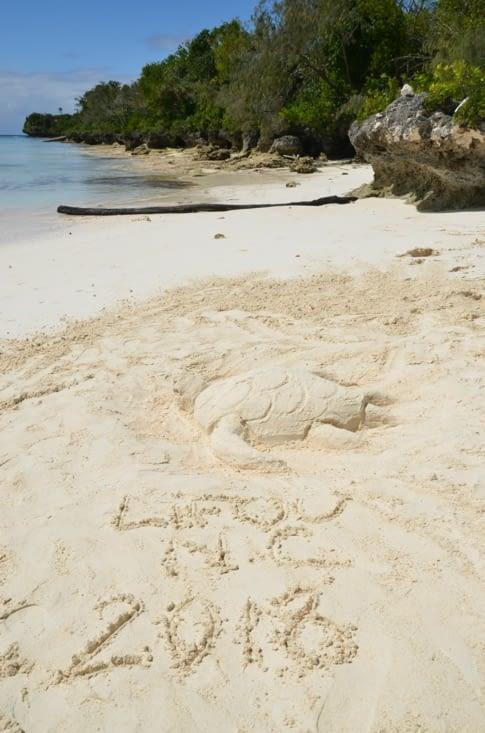 Petite tortue sur la plage de Luengoni