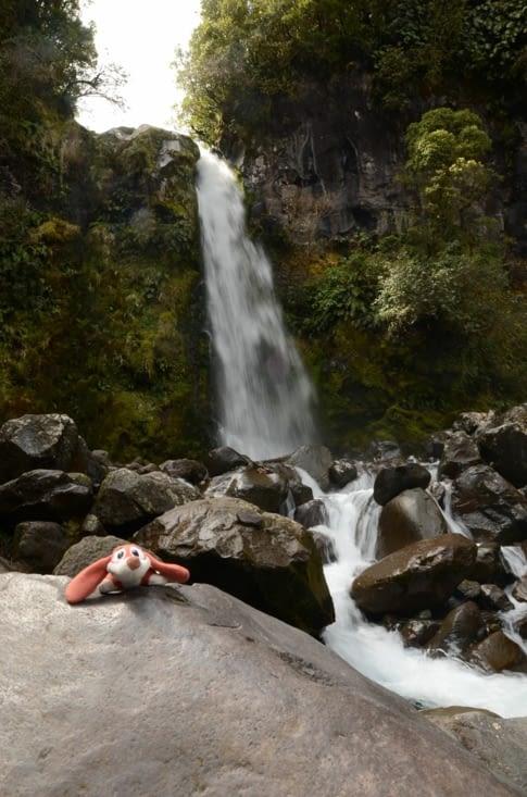 Dawson's Waterfalls