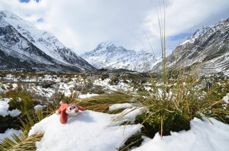 Même Margoulette a vu la neige !