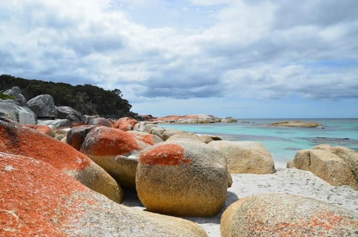 Toujours une magnifique plage avec ses blocs de granits et le lichen orange