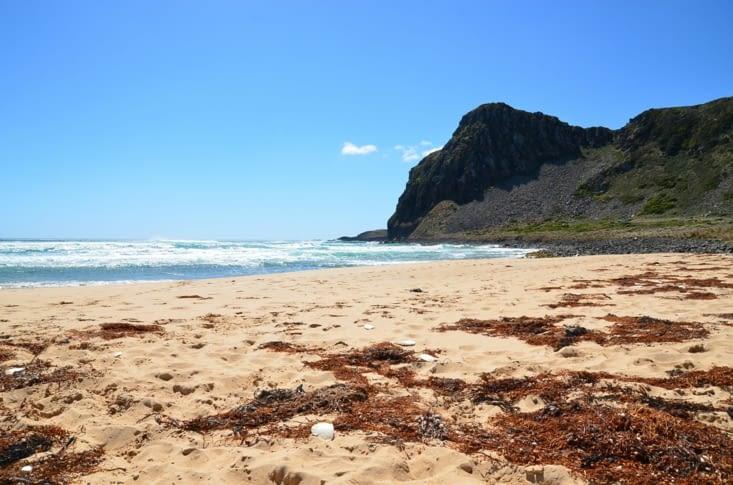 La plage de surf