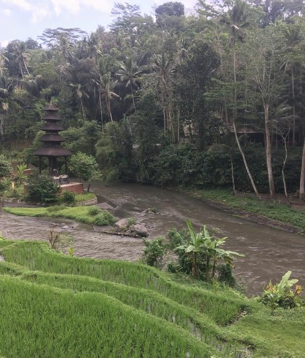 La beauté des décors des environs d'Ubud