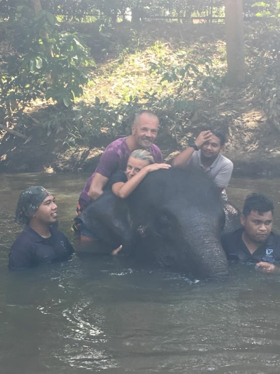 A day in the elephants' sanctuary in Malaysia