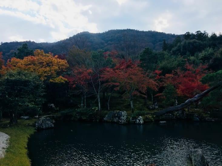 L'automne au Japon
