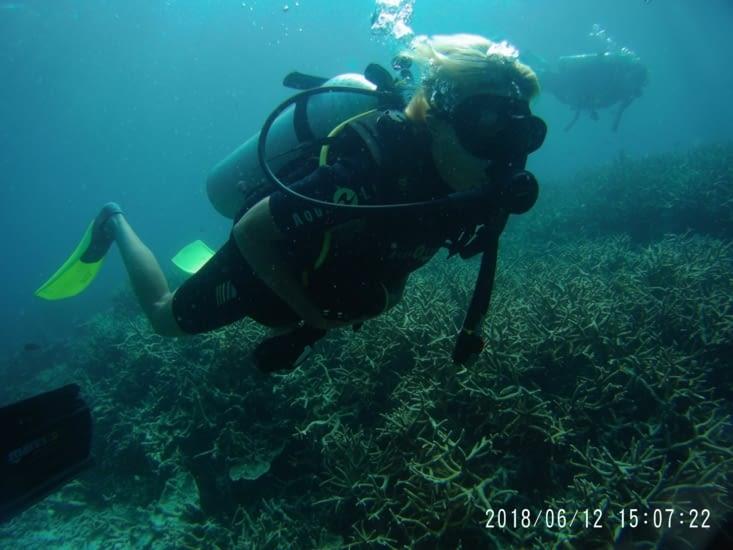 Diving in Tioman island, Malaysia