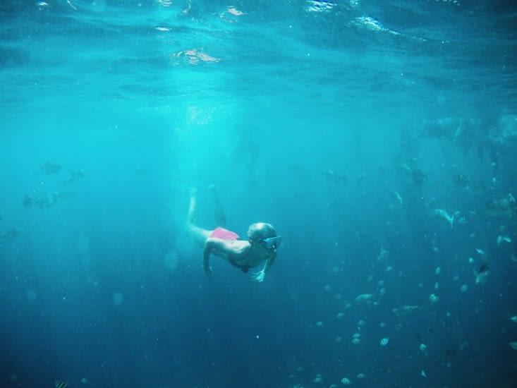 Le Snorkeling aux Philippines