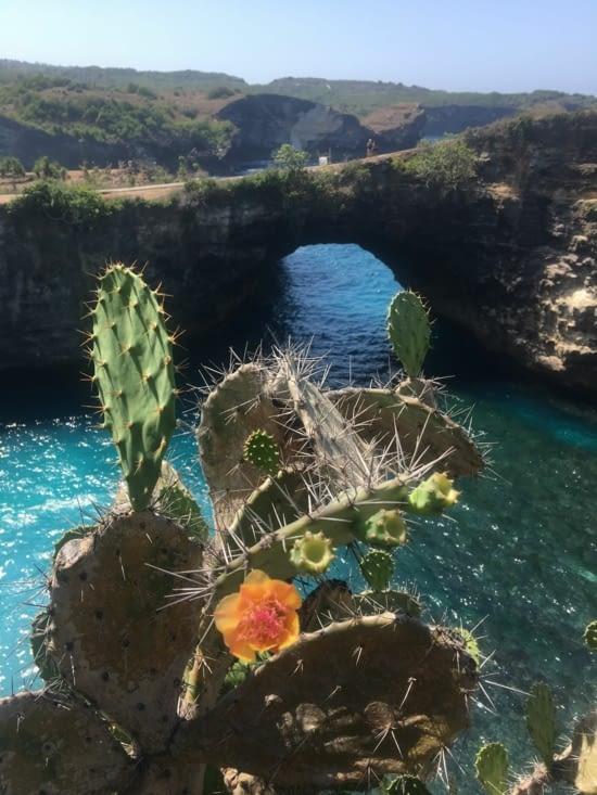 L'île de Nusa Penida à Bali, Indonésie