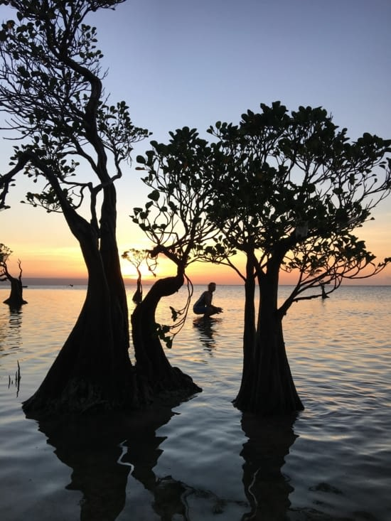 L'ile de Sumba en Indonesie ... une beauté de la nature !