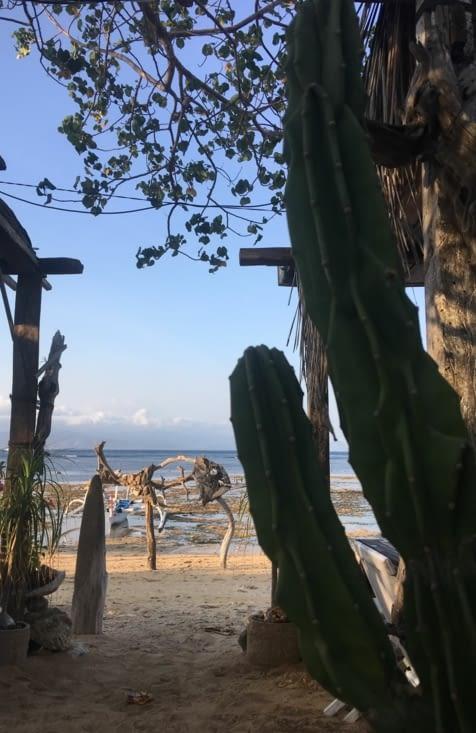 Un resto-bar atypique sur l'île de Lembongan près de Bali