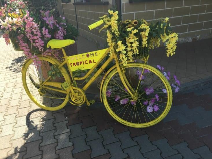 Des vélos décorés à chaque coin rue d'une petite ville en Italie à côté de Venise ❤️