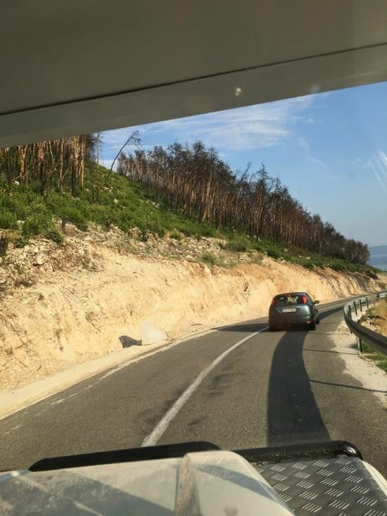 """Résultat d'un incendie en 2002 , dévastateur sur des km2 dans le parc naturel de Korkula. Replanter est un travail de """"titan"""""""