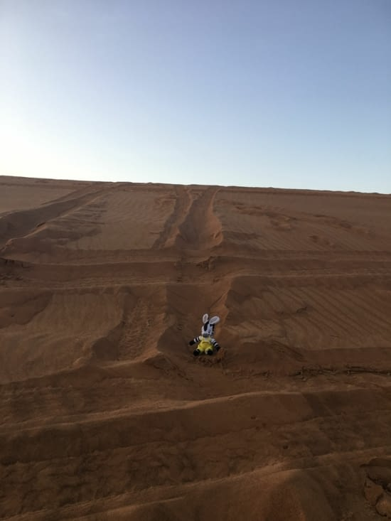 Notre Zebrakid s'essaie au Désert de Dubai !