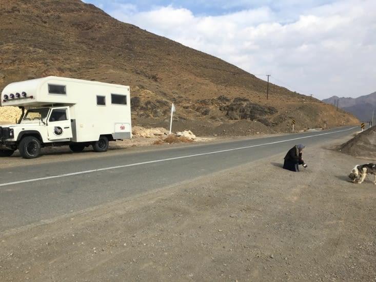 Les chiens ne sont pas des Animaux de compagnies en Iran !