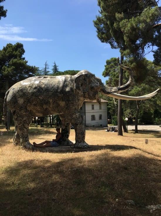 Un éléphant, ca trompe enormement