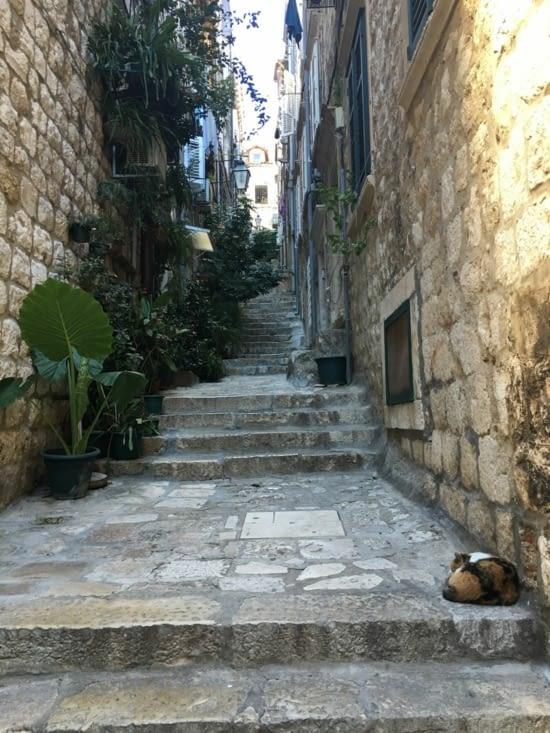 Une jolie petite ruelle mais beaucoup de marches
