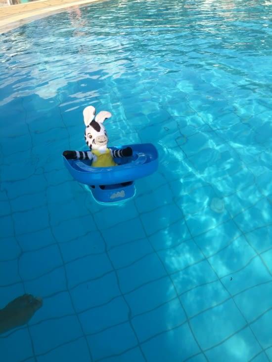 """Zebrakid a l'Aqualand ... de Corfou (d'autres photos dans """"humeur et anecdotes."""")"""
