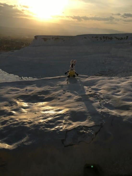 Meme  Zebrakid se  croit au ski !