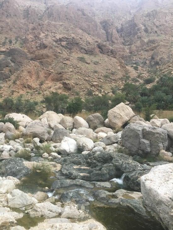 Découverte du Wadi Tiwi ... peu d'eau mais magnifique !