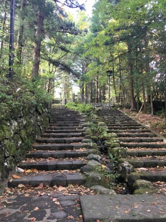 De la mousse, immenses arbres, des temples, des jardins ... tout y est