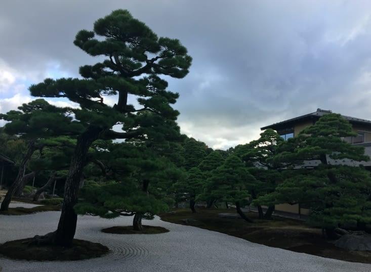 Le jardin ...Japonais ... de Matsue sur l'ile Voisine