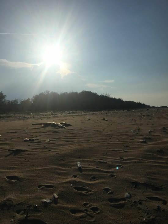 L'envers du décor ... les plages et les détritus. 80% des bouteilles en plastique !