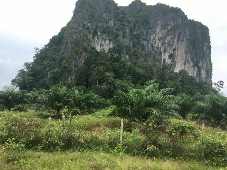 Un temple Indou dans une grotte (la deuxième après Batu Caves)