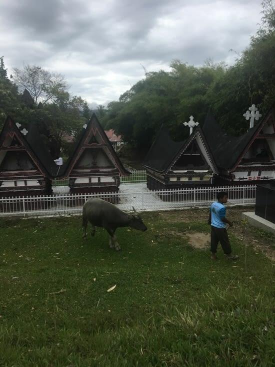 Les tombeaux Batak sur la presqu'île de Samosir du lac Toba