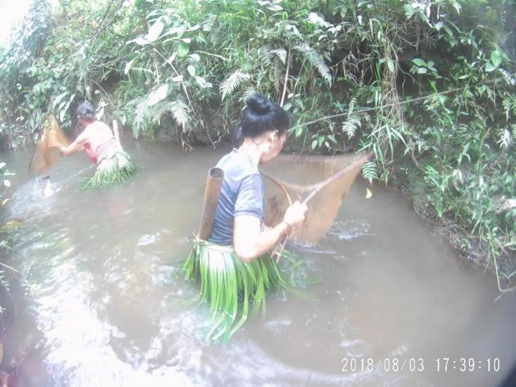 La pêche des crevettes dans le ruisseau (seulement les femmes la pratique)