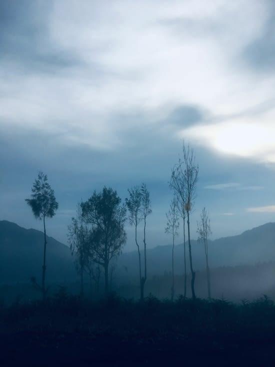 Nous voila à destination du Volcan Bromo au lever du soleil ...