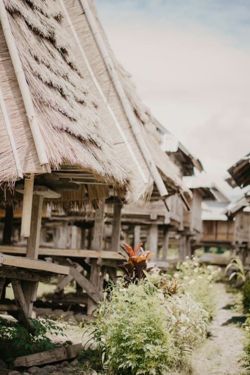 Les maisons typique de Flores : a la fois habitation et stockage du riz