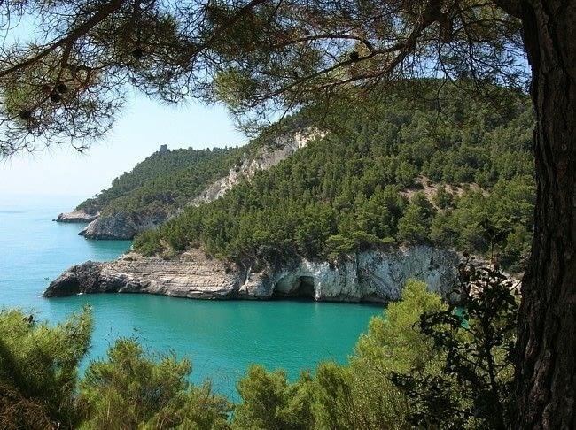 Quand après la traversée du parc le maquis laisse enfin entrevoir la mer (Source : pizzicatbeb.com)