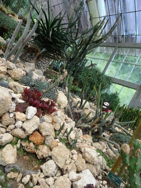 Visite d'un jardin botanique