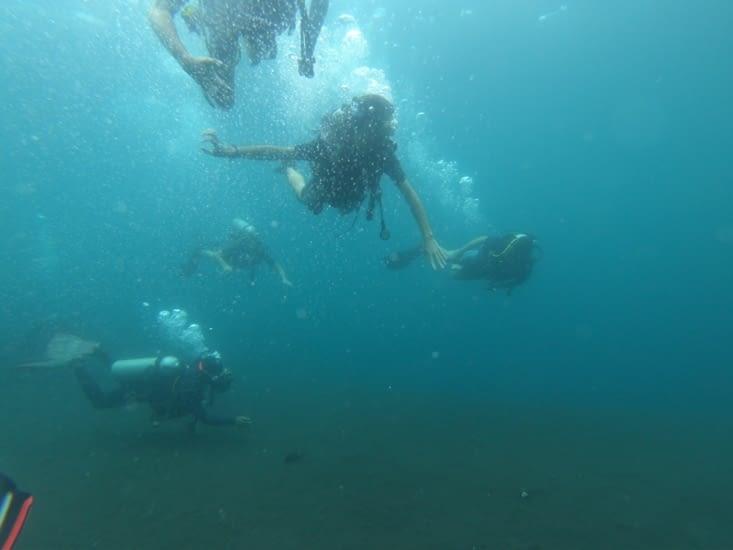 Deuxième plongée dans l'épave Liberty