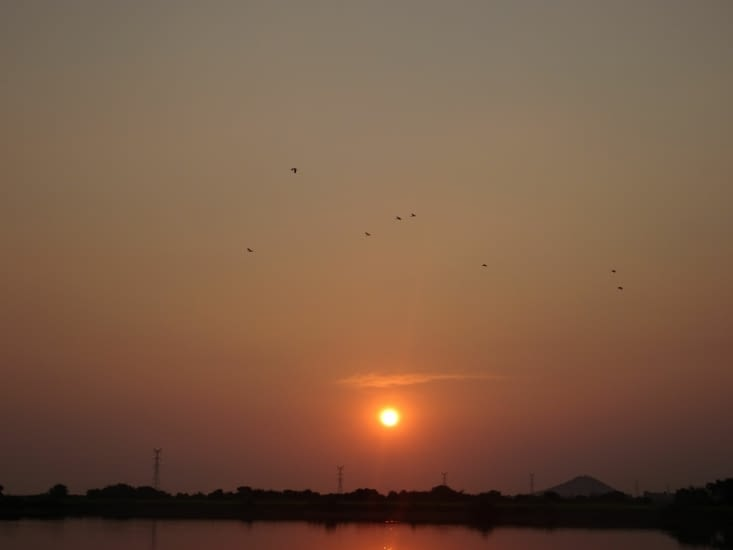 coucher de soleil avec les oiseaux