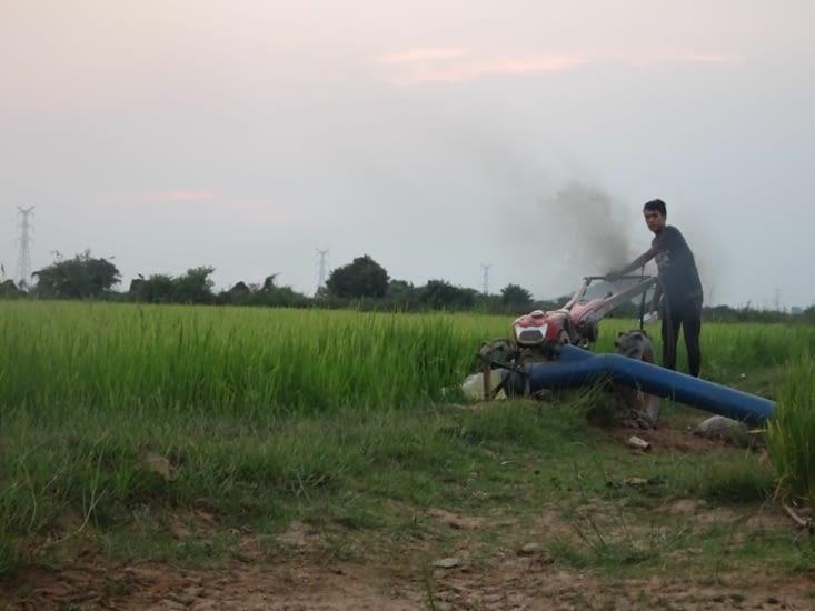 Irrigation des rizières