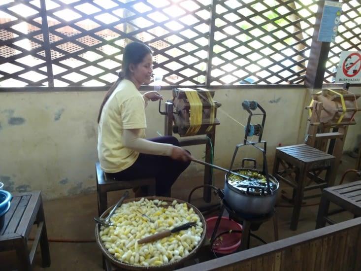 Extraction des fils de soie