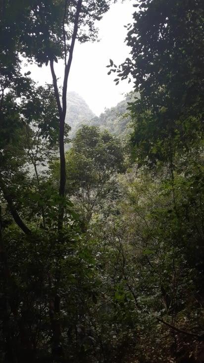 Le parc national