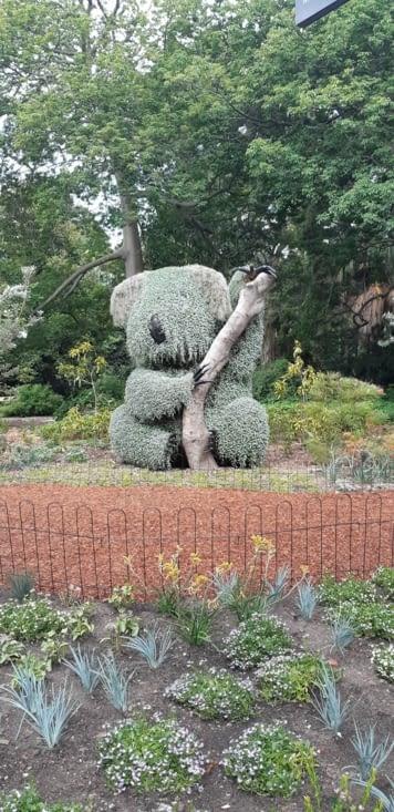 Le jardin botanic
