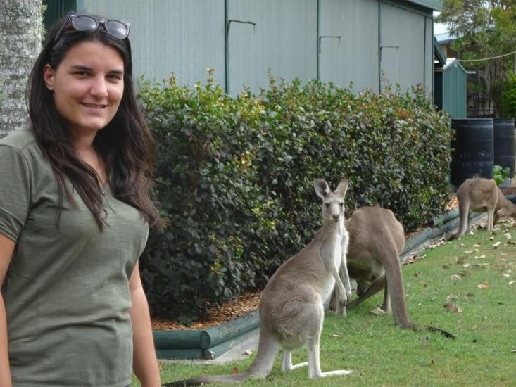 Nouvelle photo avec les kangourous !