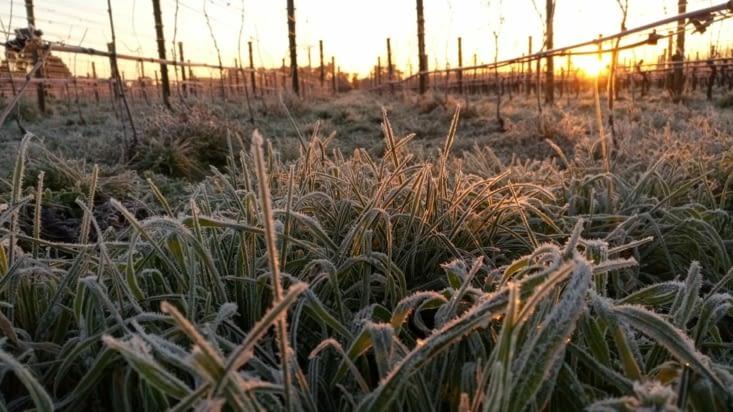 Les couches de gel s'agrandissent de jour en jour ❄