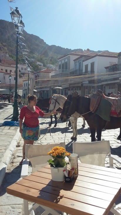 des ânes-taxi