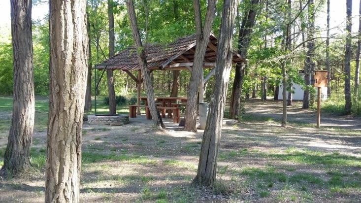 1ère étape géniale: un coin dans une forêt avec eau et barbecue!