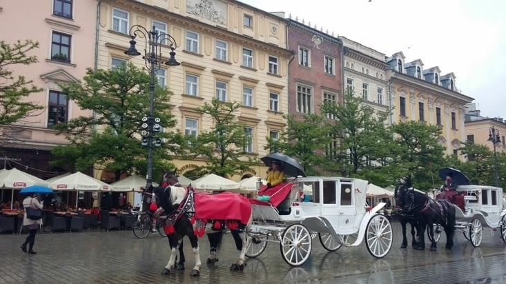 calèche traditionnelle sur la place du marché