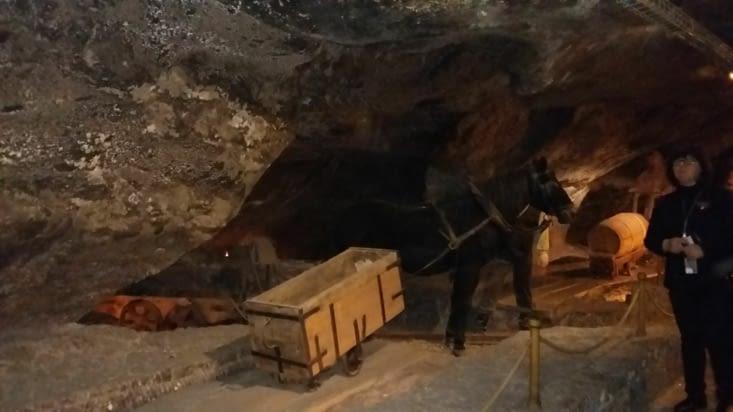 Exploité depuis le XIIIème siècle,cette mine est classé au patrimoine mondiale de l'UNESCO