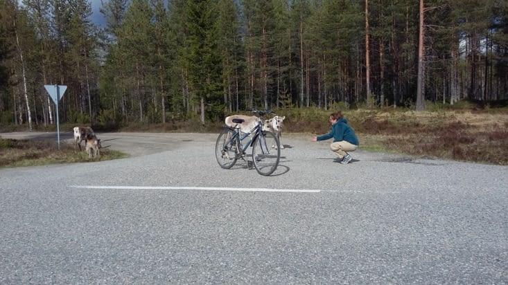 lors de ballade en vélo....