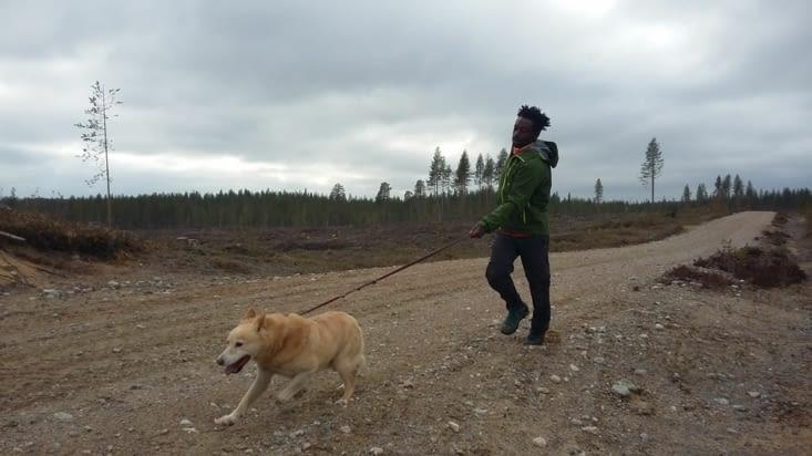 Sorti avec Ali: une affaire de vitesse. Ali fait partie des chiens isolés car chiens de